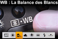 Picture of La balance des blancs